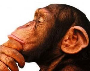 figura de um chimpanzé pensando